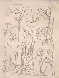 Andy Warhol Drawings   Andy Warhol, Flowers , 1950s, ©AWF