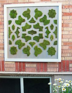 Moss Art (and why failures are sometimes a good thing) – Not JUST A Housewife