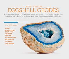 Science Decorations Student - Create Crystals in this Egg Geode Experiment Science Fair Projects, Science Experiments Kids, Projects For Kids, Science Ideas, Class Projects, Borax Crystals, Diy Crystals, Kid Science, Fun Crafts