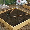 """Every time I open a plant catalog or see a television commercial for sale-priced $99 raised bed gardening kits, I cringe! I've never spent more than $8 to build a four-by-four-foot bed or $35 to build a 20-foot-long one."" - Doreen Howard, Old Farmer's Almanac"