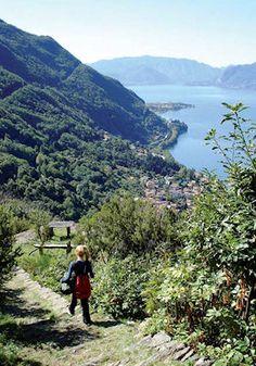 The path from Dorio to Dervio
