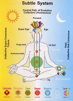 """All energy moves in a spiral, torus, circle..."""" ...This is an ancient diagram of our sympathetic and parasympathetic nervous system, depicted in India long before the advent of western neurology. We obstruct flows of energy through trauma in specific areas. These can be corrected easily with the proper energy stimulation, or nullification, depending on the 'specific' created by our experiences."""