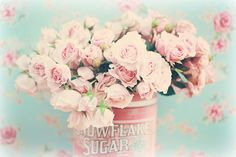 Roses everywhere by lucia and mapp, via Flickr