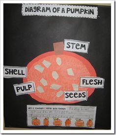 1000 images about gr 1 2 pumpkins on pinterest pumpkin. Black Bedroom Furniture Sets. Home Design Ideas