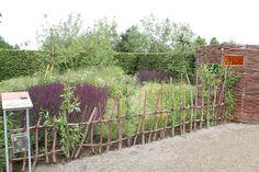 Tuinen voor Vincent groeien gestaag - Tuin en landschap |
