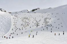 snow , ski ,spending