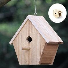 Bird house plans google search wow lots of great plans for Song bird house plans
