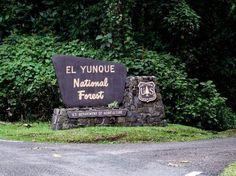 El Yunque Rain Forest - Luquillo, PR