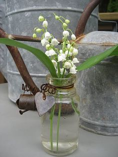 Lily of the Valley in a rustic setting. Lily of the Valley in a rustic setting. Birth Flowers, May Flowers, Spring Flowers, Beautiful Flowers, Bouquets, Lily Of The Valley Flowers, Shabby Chic, Deco Floral, Belleza Natural