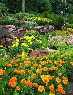 Awesome Herbstlicher Garten mit Gr sern und Fetthenne Sedum Wohnen und Garten Fotomunity Garten Gestaltungstipps Pinterest Garten