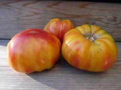Old German Tomatoes
