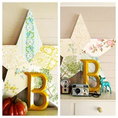 Wallpaper covered star  Trisha Brink Design