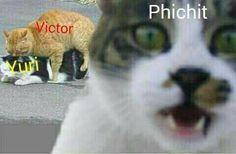 Memes de Yuri On Ice, pasa, se que quieres ( ͡° ͜ʖ ͡°)