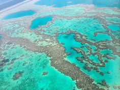 #greatbarrierreef #coralsea #australia #sevennaturalwondersoftheworld #march2016 by damiencrosse_official http://ift.tt/1UokkV2