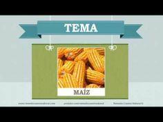 Beneficios, nutrientes y propiedades del maíz. Más información en: http://www.remediocaseronatural.com/comidas-sanas-beneficios-maiz.htm