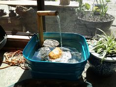 Tin tub, spray paint, pump, bamboo...all together...water feature for the patio...