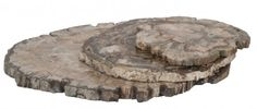 Petrified wood cheese platters