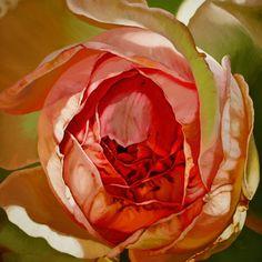 """Saatchi Art Artist Chloe Hedden; Painting, """"Constance"""" #art"""