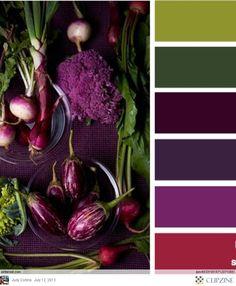 http://clipzine.me/judithdcollins/clipzine/83059442519746969941/Color-Palettes/86