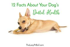 12 Facts About Your