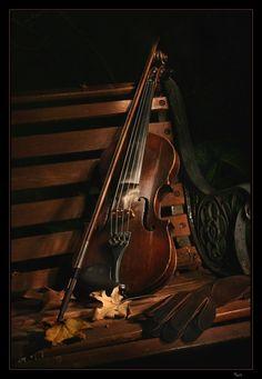 *Violin