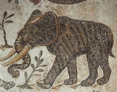The Extinction of Compassion: A Story of Empires and Elephants 1/2 | Nomadic Politics