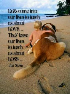 Dogs come into our lives to teach us about love. They leave our lives to teach us about loss.