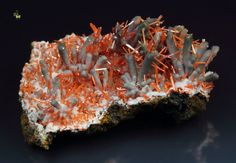 Crocoite and Gibbsite - Adelaide Mine (Adelaide Pty Mine; Adelaide Proprietary Mine), Dundas mineral field, Zeehan District, Tasmania, Australia