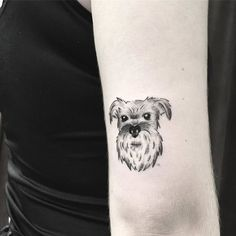 Schnauzer Dog Tattoo by pinkbecker