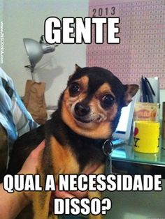 New Memes En Espanol Funny Quotes Ideas Memes Humor, New Memes, Ghetto Humor, Animal Jokes, Funny Animals, Dog Pictures, Funny Pictures, Couple Pictures, 4 Panel Life