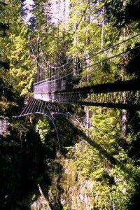 Oregon Coast- Drift Creek Falls