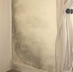 55 exciting condensation and mould images damp proofing diy rh pinterest com