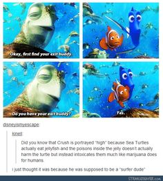 Funny pictures about Something About Crush From Finding Nemo. Oh, and cool pics about Something About Crush From Finding Nemo. Also, Something About Crush From Finding Nemo photos. Disney Pixar, Disney And Dreamworks, Walt Disney, Disney Nerd, Disney Love, Disney Magic, Disney Stuff, Disney Channel, Humor Disney
