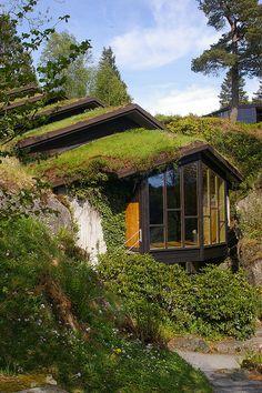 Troldsalen (concert hall in honor of Grieg near his home in Bergen, Norway).