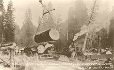 This scene, probably photographed in mid to late 1918, shows the loading of spruce logs in Clallam County by a Spruce Production Division crew. This location would have actually been along Spruce Production Division Railroad No. 2, as that railroad was completed from Pysht, Washington in May 1918, about six months before WWI ended. The logs shown were up to about nine feet in diameter and were hoisted onto railroad skeleton cars using the steam donkey yarder visible in the background.