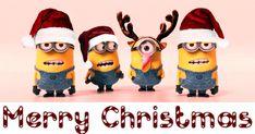 merry christmas gif & merry christmas _ merry christmas quotes _ merry christmas wishes _ merry christmas wallpaper _ merry christmas calligraphy _ merry christmas signs _ merry christmas quotes wishing you a _ merry christmas gif