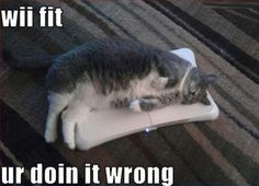 Dangit!!! All this time... I was wondering why everyone esle complained about sore muscles after doing an hour of Wii Fit.