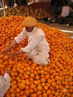Homemade orange juice // Maroc by #Anticocotte -
