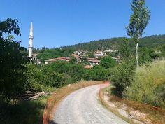 http://ayancuk.com/koy-6332-Topuk-Koyu-Orhaneli-Bursa.html  Topuk Köyü; Bursa ilinin Orhaneli ilçesine bağlı bir köydür.