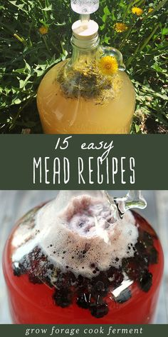 15 Easy Mead Recipes for Beginners Homemade mead is simple, delicious, and fun to make. Here are 15 easy mead recipes for beginners! Learn how to make your own mead. Homemade Wine Recipes, Homemade Alcohol, Homemade Liquor, Honey Recipes, Alcohol Recipes, Mead Wine Recipes, Brewing Recipes, Homebrew Recipes, Honey Mead