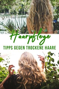 Haarpflege Tipps gegen trockene Haare Hair Care Tips Aubrey Organics, Pai Skincare, Goji, Black Grunge, Split Ends, Makeup Blog, Grunge Hair, Hair Care Tips, Dry Hair