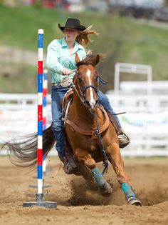 Rodeo Pole Bending   ... her great pole bending horse Simmy at Williams Lake High School Rodeo