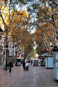 ∞ Barcelona, La Rambla in the fall