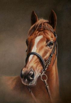Horse painting by Claudia Duffe:
