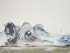 hippo graphics - Google Search