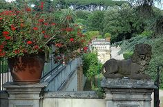 Rome, villa Pamphili, DSC_5220