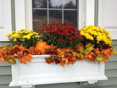 42 Cheap and Easy Fall Window Boxes Ideas Cheap And Easy Fall Window Boxes Ideas 03 Fall Window Boxes, Window Box Flowers, Fall Flower Boxes, Fall Flowers, Window Planter Boxes, Planter Ideas, Fall Containers, Succulent Containers, Container Flowers