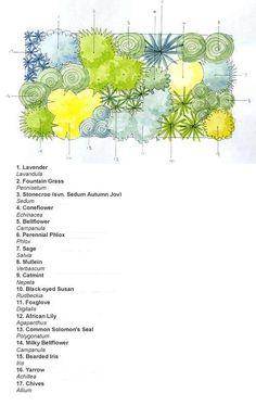 Ready-made border Cottage garden scheme