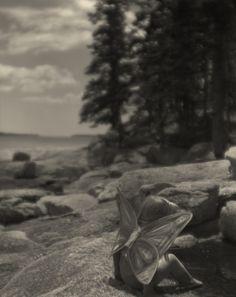 https://flic.kr/p/fxoV2w | img434 | Winged Naomi. Birch Point Beach state park, Owls Head ME. Reinhold Wollaston 190mm meniscus at f8. tmy2 4x5 film in pyrocat HD