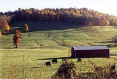Williamson County TN